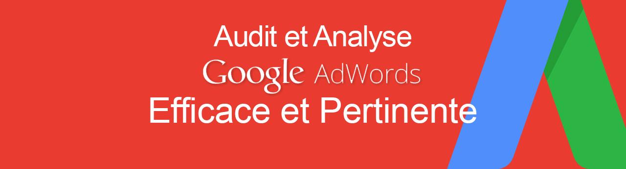Audit et analyse de votre campagne Adwords par Trigramme